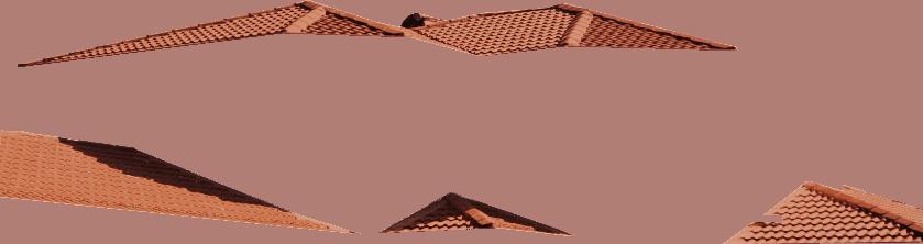 Roof Peach Img 19
